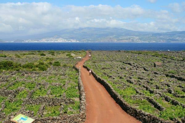 Pico, Azoren Welterbe planetenreiter.de 2013