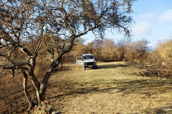 Tansania Reiseblog: Auf dem Moshi Highway
