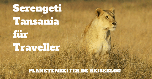 Serengeti Safari Tipps