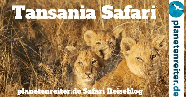 Tansania Reiseblog