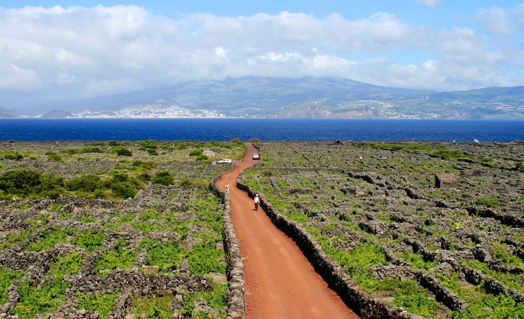 Azoren Reisetipps: Weinanbaugebiet Pico mit Blick auf Faial