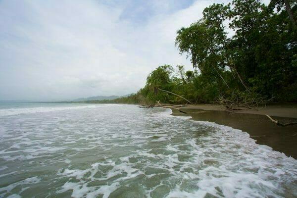 Costa Rica roadtrip: Strand im Cahuita NP