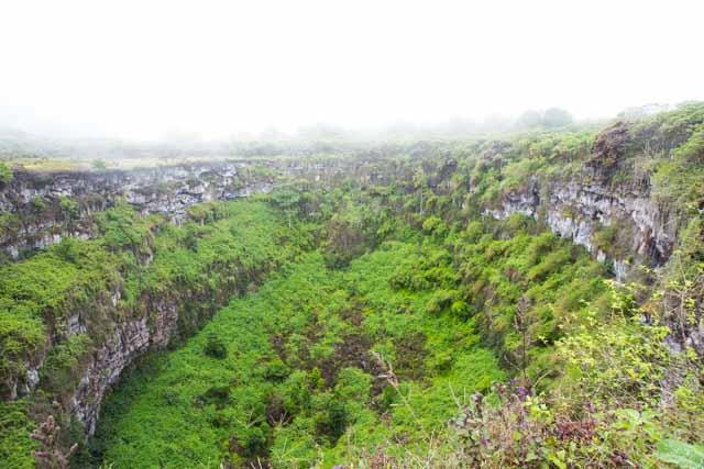 Galapagos Los Gimeles Santa Cruz