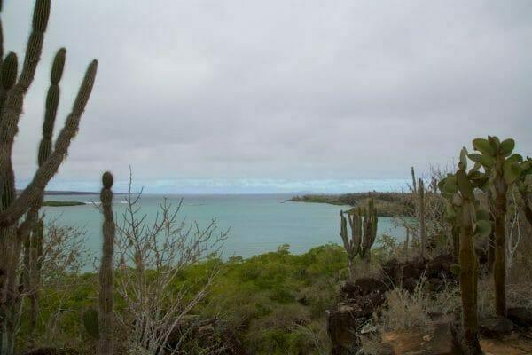 Galapagos Santa Cruz Panorama