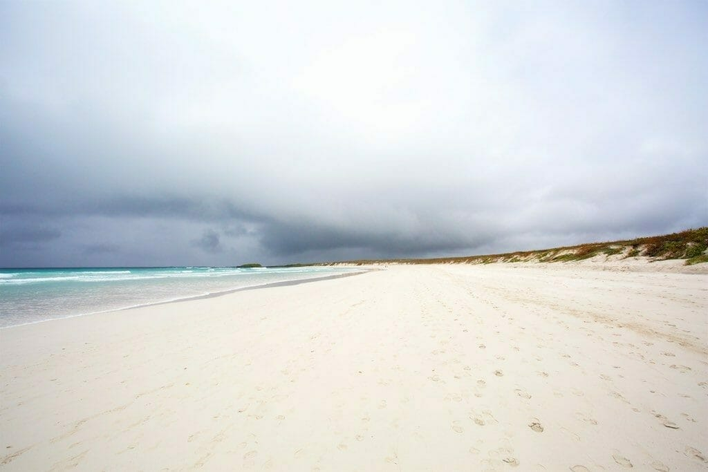 Santa Cruz Galapagos