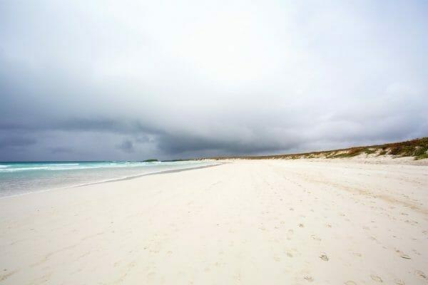 Galapagos Santa Cruz: Playa Tortuga
