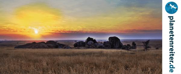 Safari travel blog