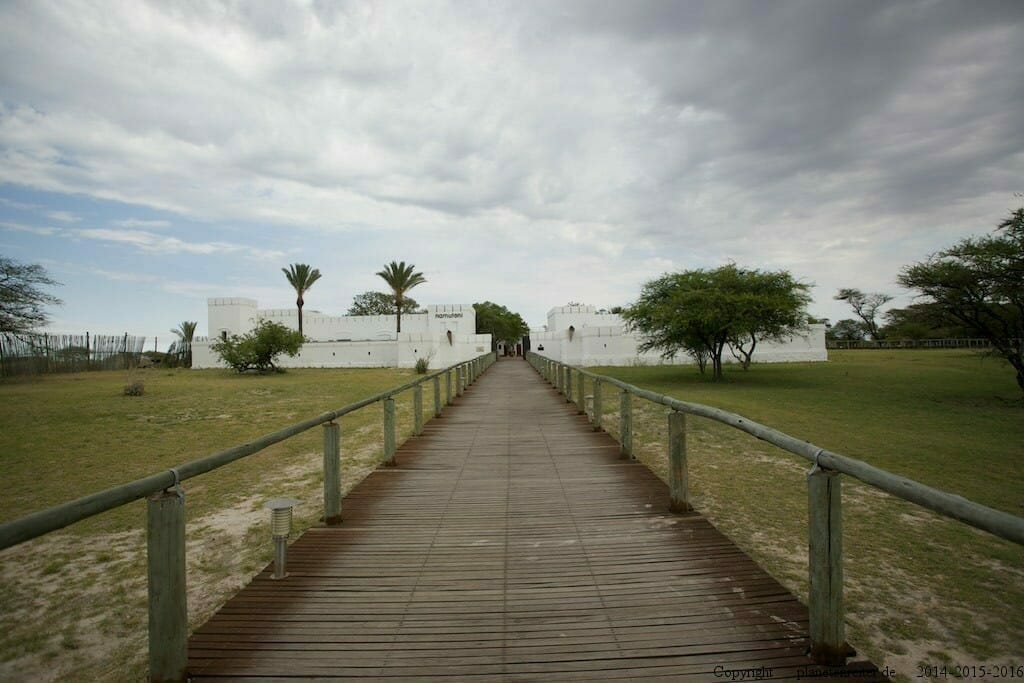 Namibia Etosha individuell