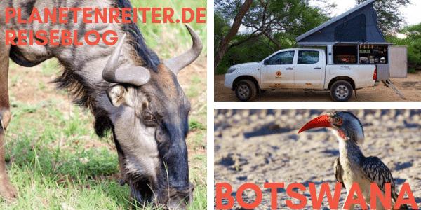 Botswana Reiseblog: Tipps für Selbstfahrer