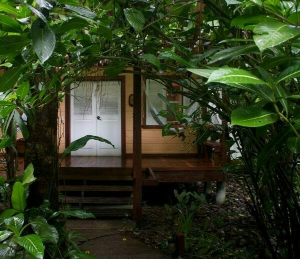 Wohnen im Grünen: Namuwoki Lodge Puerto Viejo