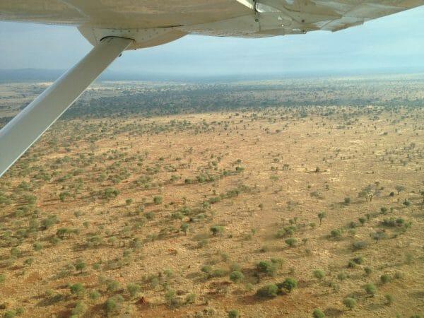 aerial shot Tarangire NP